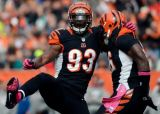 Bengals Franchise Tag DE Michael Johnson